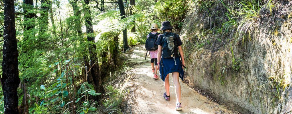 Pitt Head - Best Short Walk - Abel Tasman Aqua Taxi