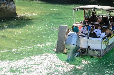 Scenic Cruise - Abel Tasman Aqua Taxi